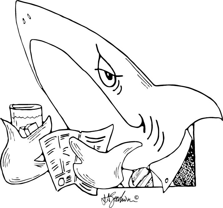 shark bridge player